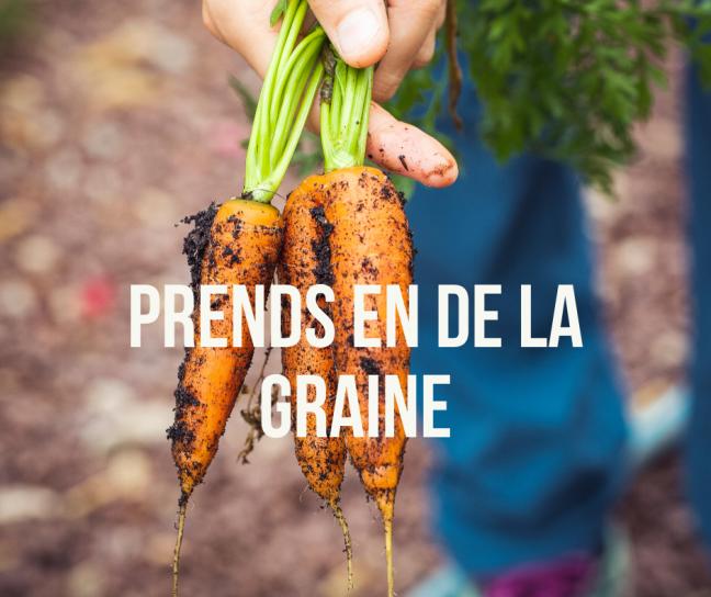 image Prends_en_de_la_graine.png (1.1MB)